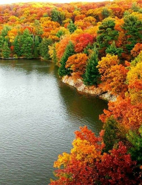 Find The Best Places To See Fall Colors Around Minneapolis!  #realestate #mplsrealestate