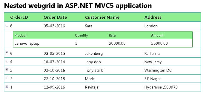 Implementing Nested Web Grid in ASP NET MVC5 | Mitechdev com | Web