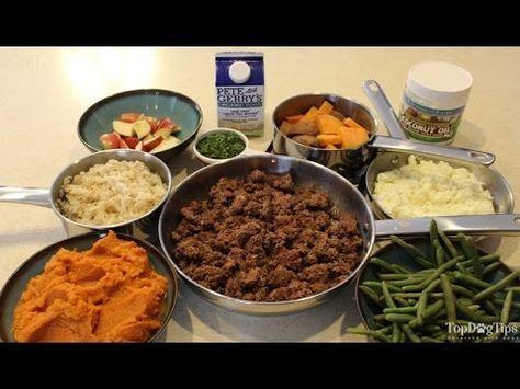 Homemade dog food for kidney disease recipe video quick simple homemade dog food for kidney disease recipe video quick simple forumfinder Images
