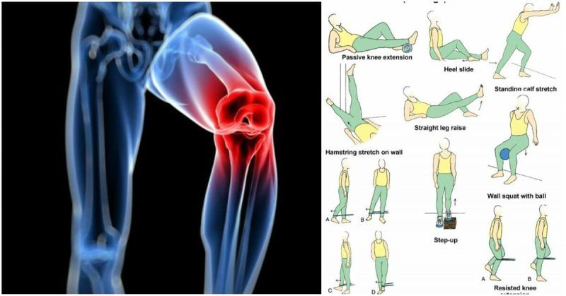 Beneficial And Repairing Knee Strengthening Exercises For A Meniscus Tear - GymGuider.com