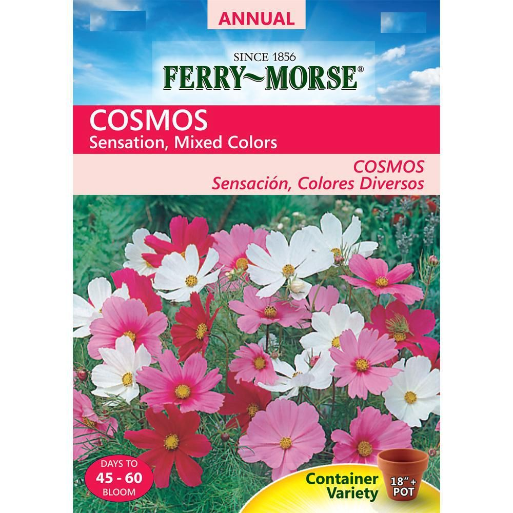Ferry Morse Cosmos Sensation Mixed Colors Seed 5554 The Home Depot Flower Seeds Online Rose Seeds Cosmos