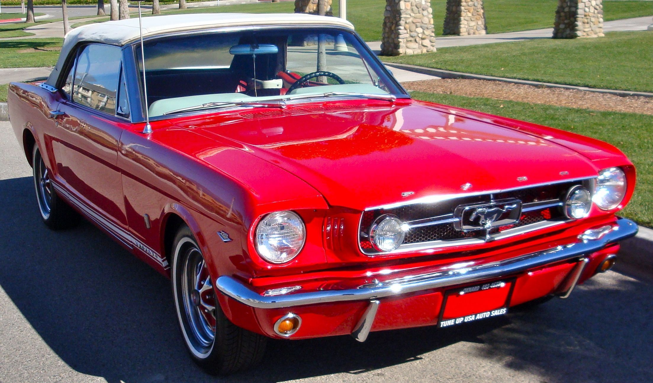 ford mustang 1965 own it and drive it across the country great outdoors ford mustang 1965. Black Bedroom Furniture Sets. Home Design Ideas