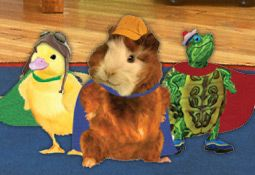 The Phone The Phone Is Ringing Wonder Pets Pets Adorable