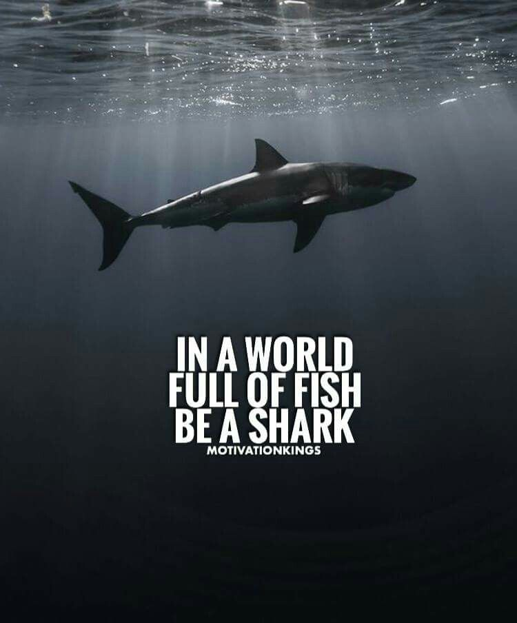 Pin by Apploit on Operations Management | Quotes, Shark quotes