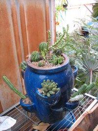 Strawberry Pot With Succulents Strawberry Pots Plants Planting Succulents
