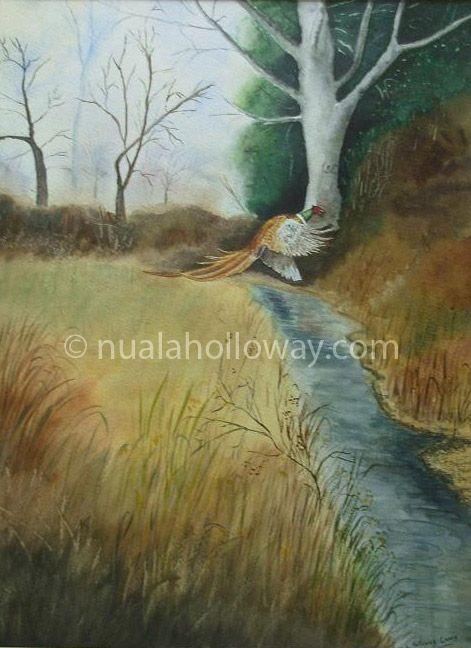 """Rising Pheasant"" by Nuala Holloway ~ Watercolour www.nualaholloway.com #Art #Pheasant #Wildlife #Watercolour"
