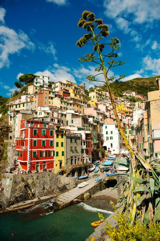 All time favorite shot I've had of this view of Riomaggiore, Italy