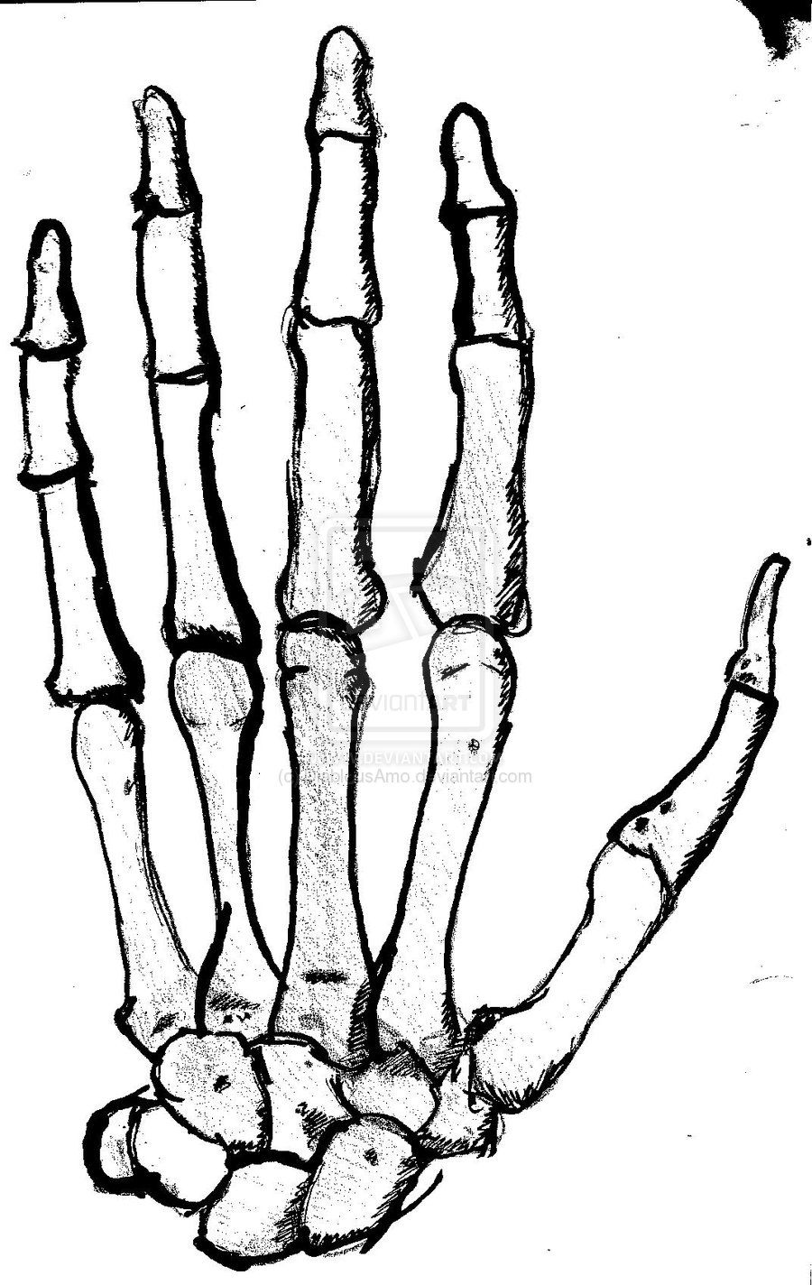 skeleton hand template