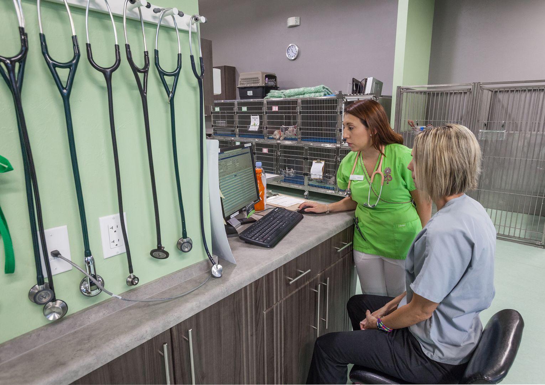 Facility Photos With Images Veterinary Clinic Hospital Design Veterinary Hospital