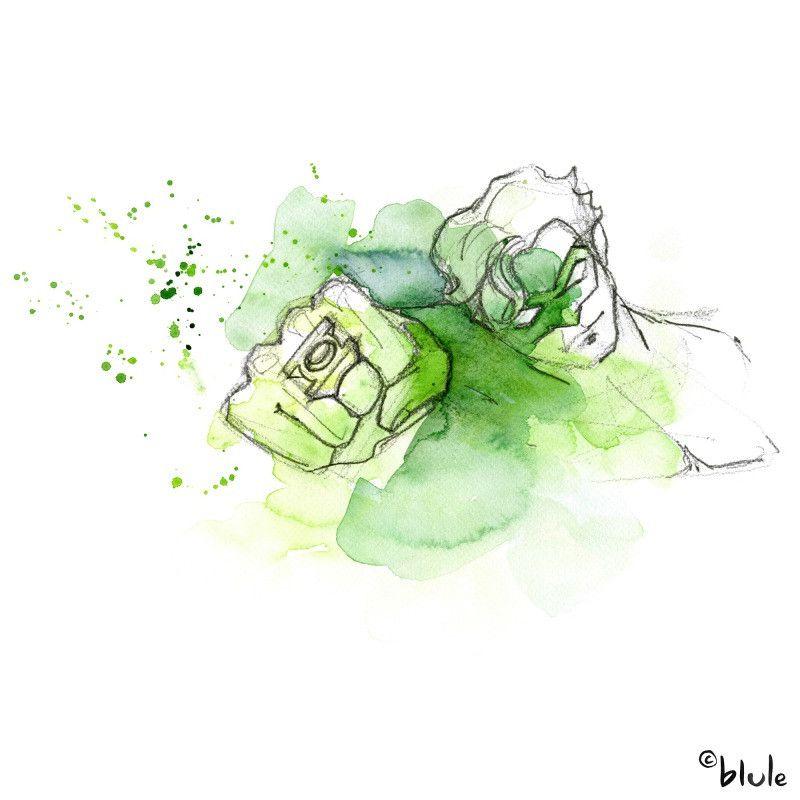 Green Lantern- Blule, The Boutique   Dessin