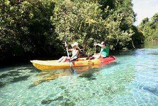 Pin By Tonia Vandyke On Interesting Travel Destinations Fun Family Trips Kayaking Florida Travel