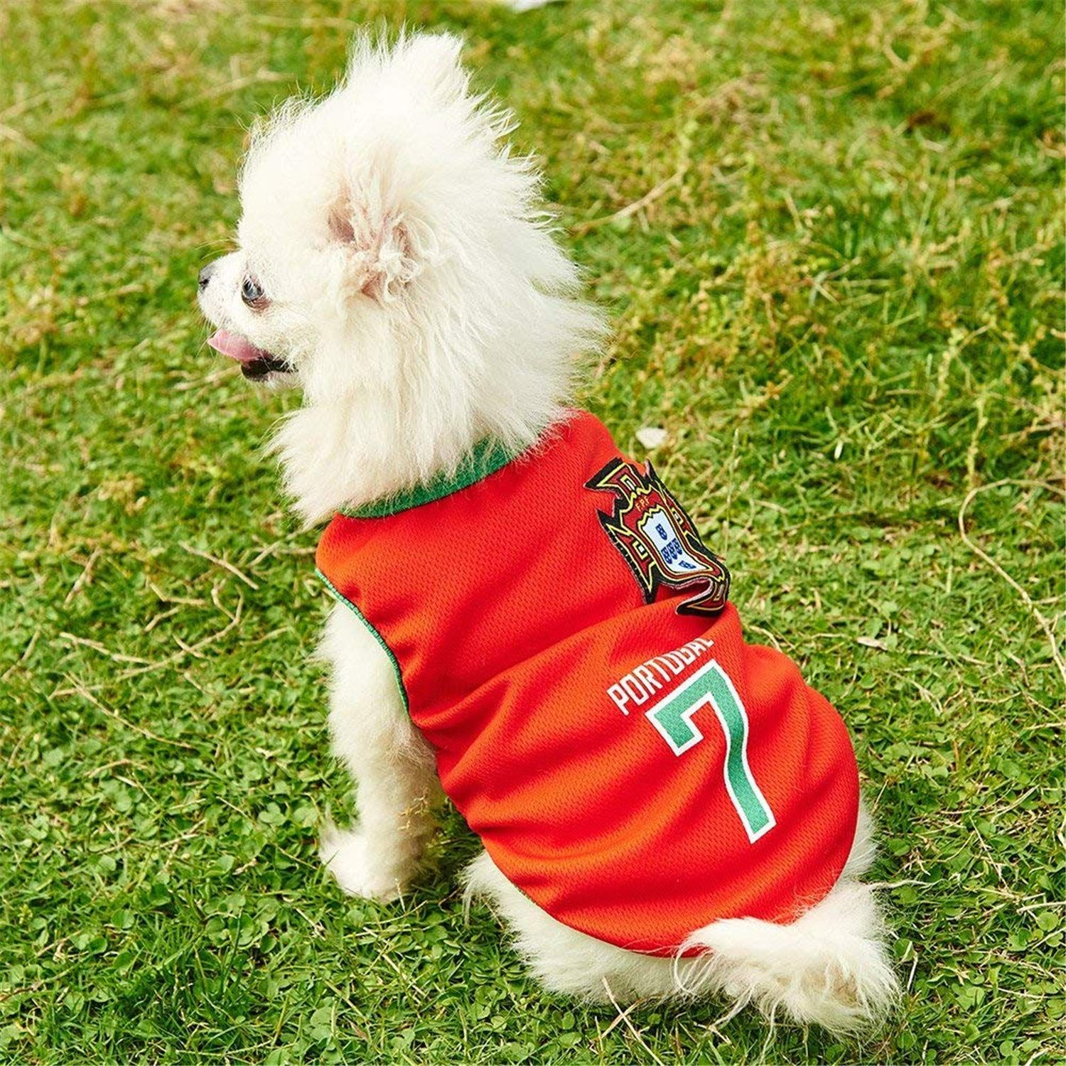 b67113760 Siray World Cup FIFA Spain National Soccer Team Pet Jersey Dogs Costume  Football TShirt Dog Clothes     A lot more information might be discovered  at the ...