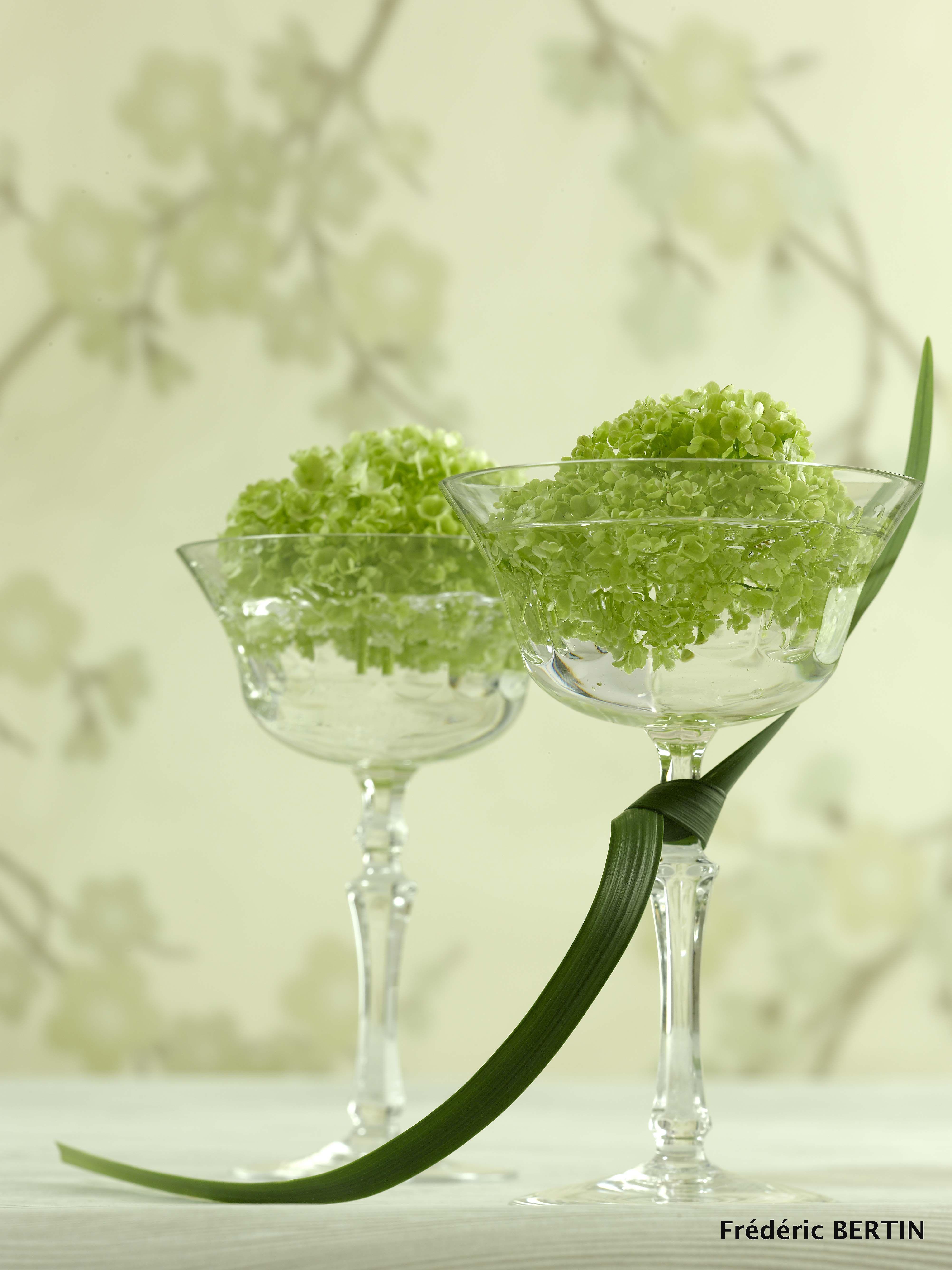 Viburnum opulus et signature végétale, coupes à champagne Cristallerie de Champagne, photo de JL SCOTTO