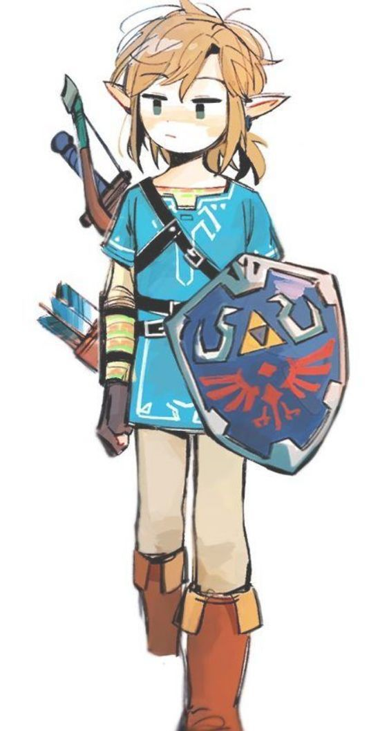The Legend Of Zelda Breath Of The Wild Link Blue Suit Legend Of Zelda Breath Legend Of Zelda Zelda Drawing