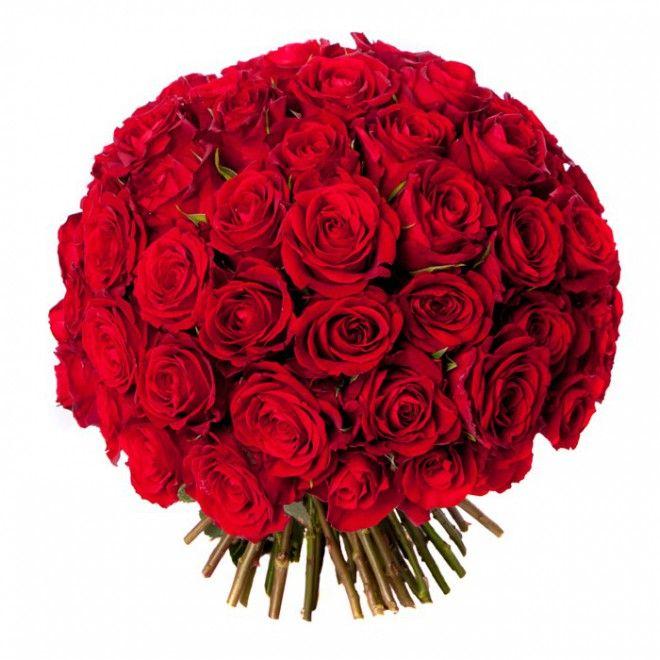 le saint valentin (101 roses rouges) | bouquets, roses et saints