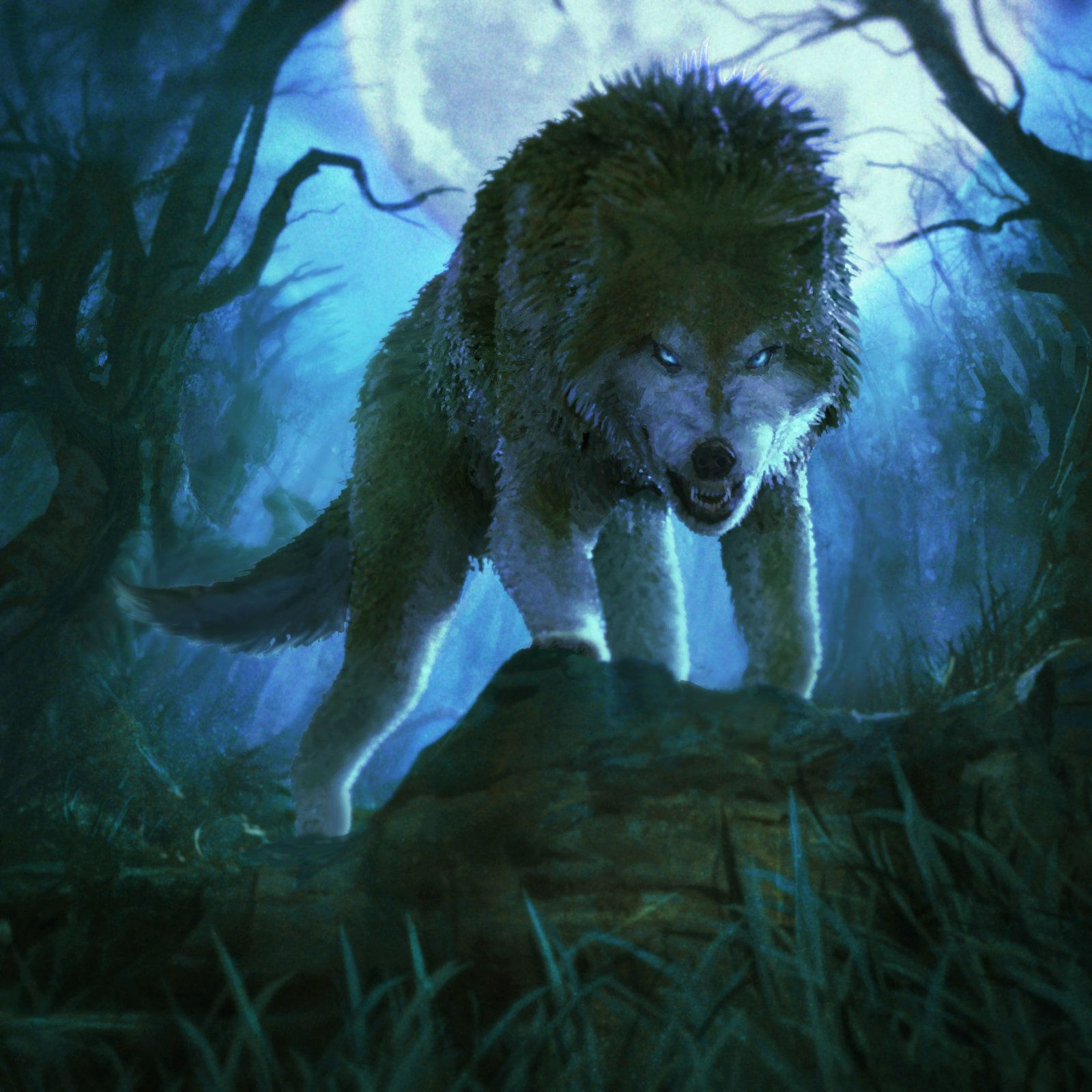 Angry Wolves Artwork