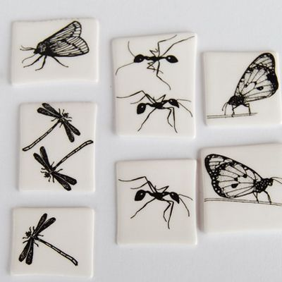 ...of insects.