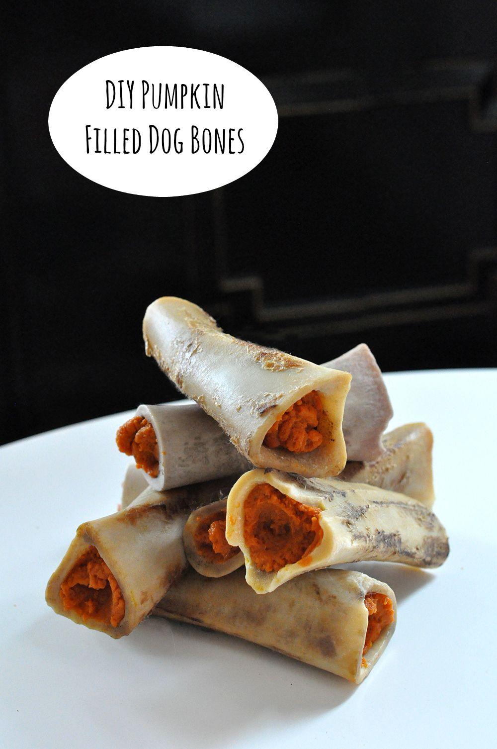 Diy Pumpkin Filled Dog Bones Dog Food Recipes Dog Bone Filling