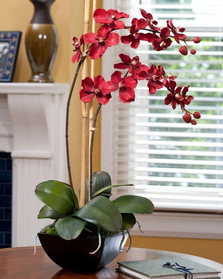 Орхидеи в интерьере - Дизайн интерьеров   Идеи вашего дома ...