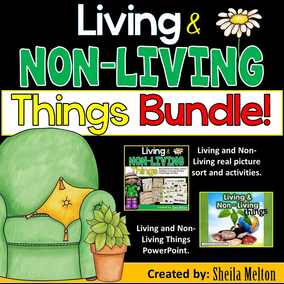 Living And Non Living Things Bundle Pack