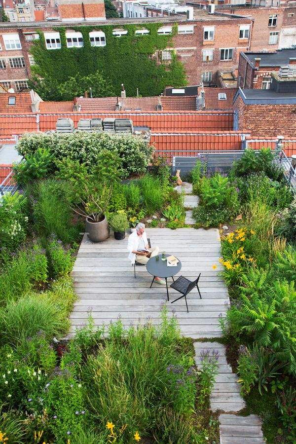Green Roofs And Great Savings Rooftop Garden Rooftop Terrace Design Roof Garden Design