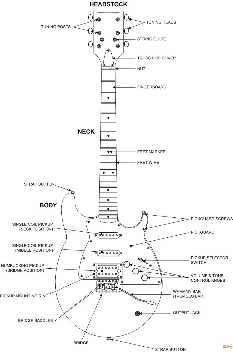 Guitar Diagram Amplified Parts Playing Guitar Guitar Music Guitar