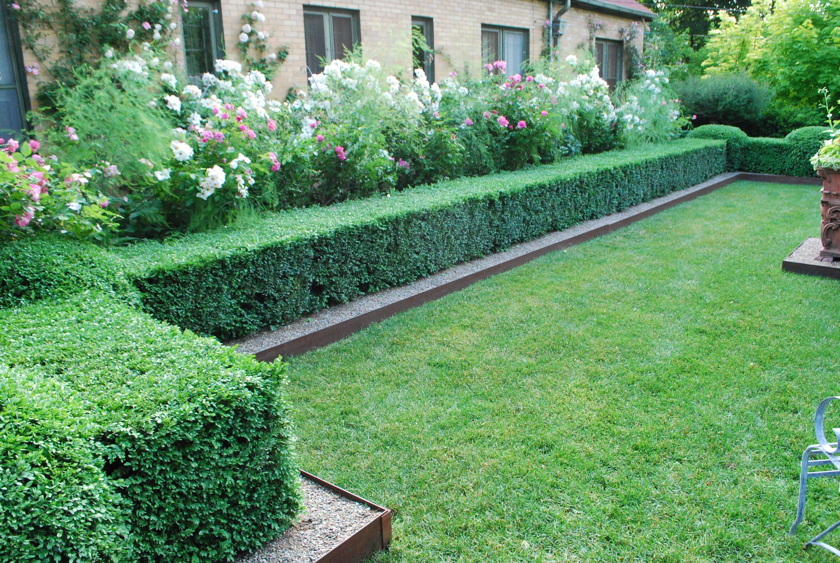 Check out edging between lawn and boxwoods gardening for Garden design ideas with hedges