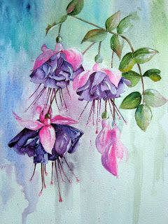 Fuchsia Again Floral Watercolor Watercolor Flowers Floral Art