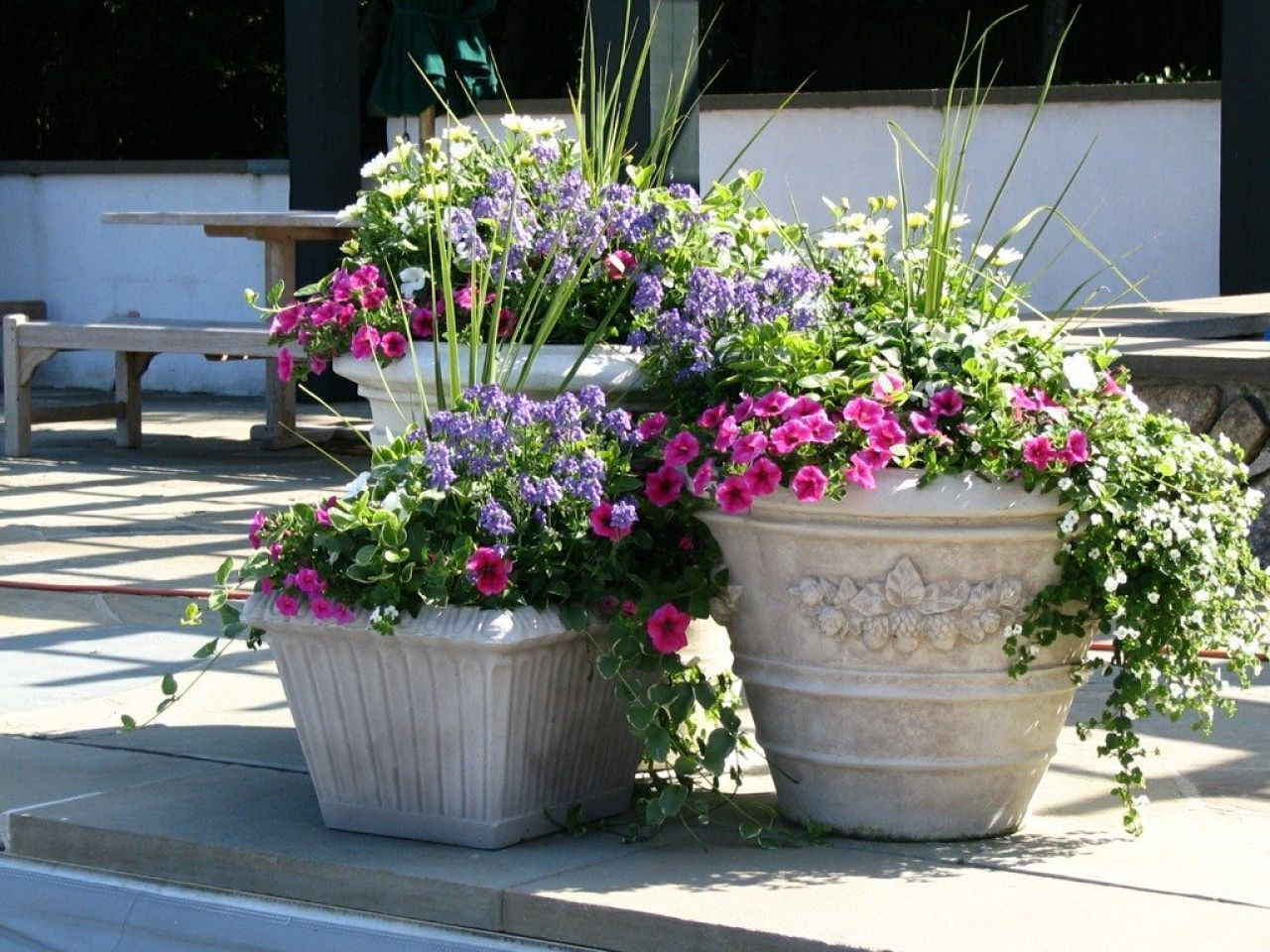 Image Result For Large Flower Pots On Front Porch Potted Plants Patio Outdoor Planters Outdoor Flowers