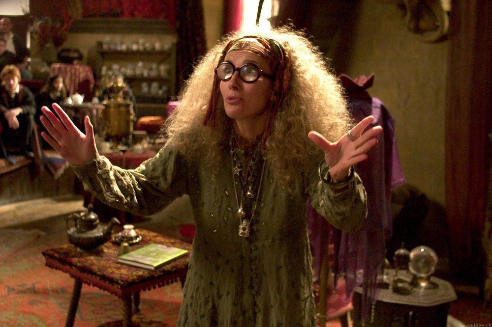 Sybill Trelawney Harry Potter Characters Emma Thompson Harry Potter Costume