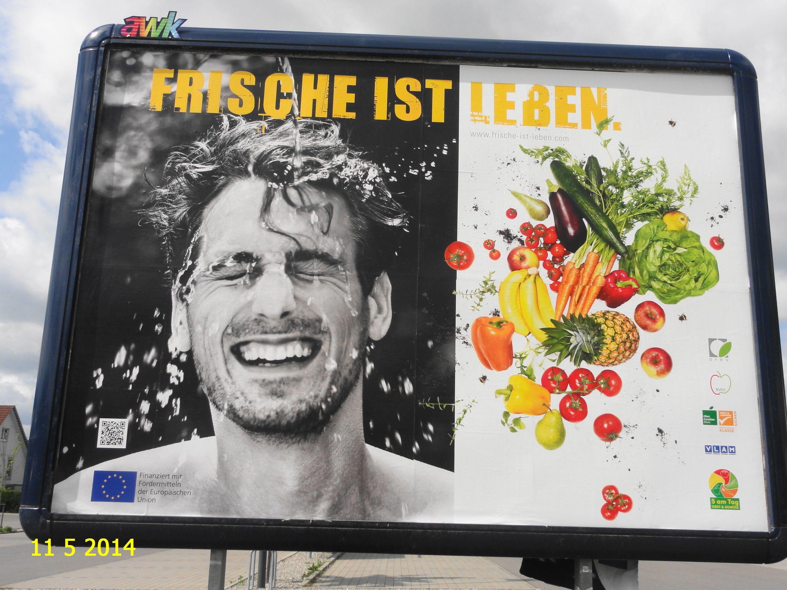 313. - Plakat in Stockach. / 11.05.2014./