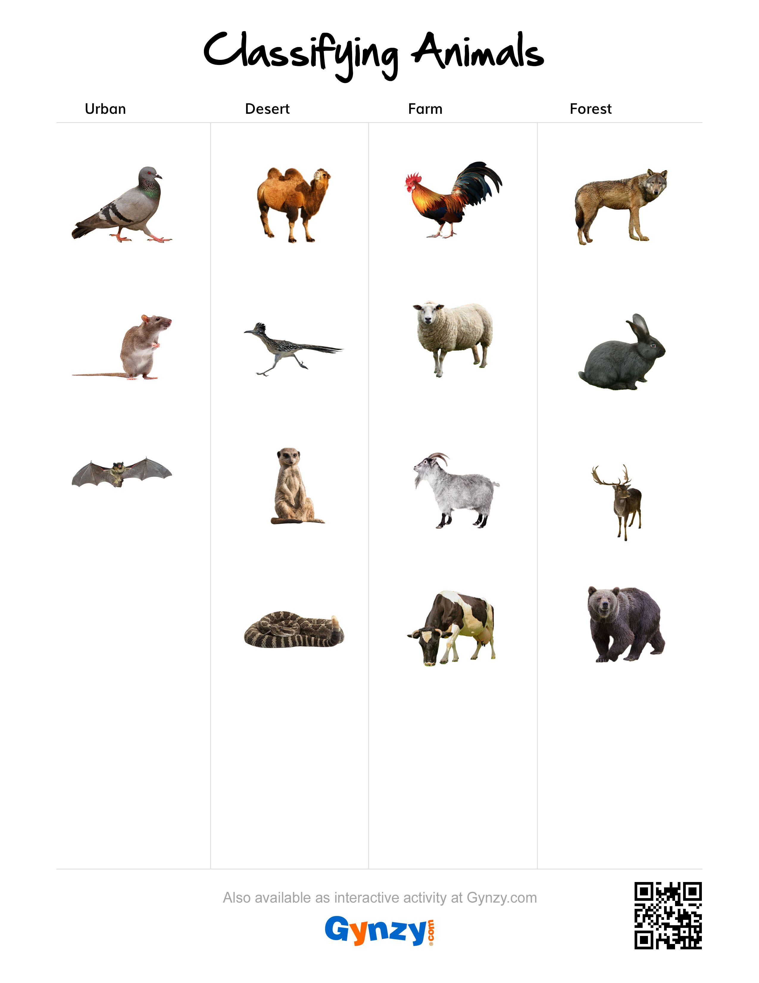 Desert Animals Matching Worksheet