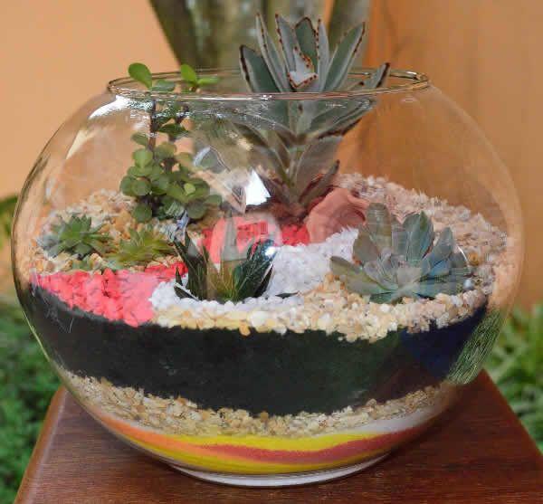 20 sensacional ideas para hacer fant sticos terrarios - Decoracion para terrarios ...
