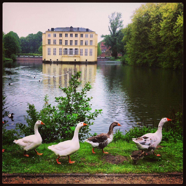 """""""After Nature / Naar de #natuur"""" #tentoonstelling in het kasteelbos rond D'ursel in #Hingene #Bornem #Belgium #aanrader voor #zomer 2013"""
