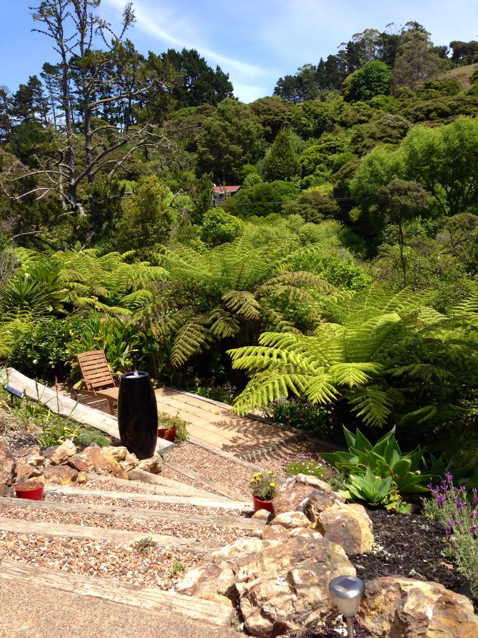 NZ native garden, I am liking the depth to the planting ...