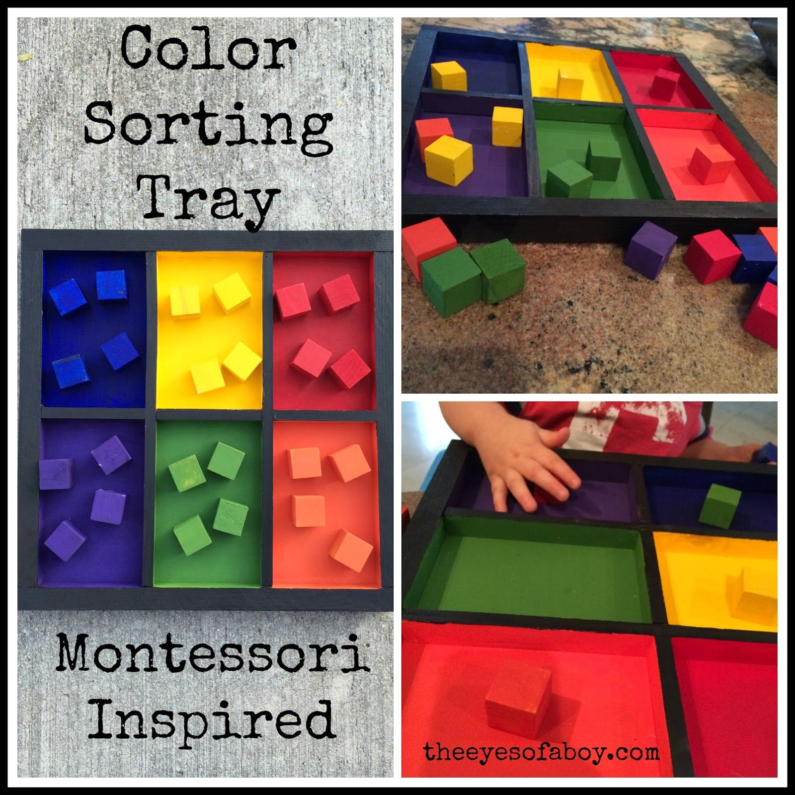 The Eyes of a Boy Montessori Inspired Wooden Color Sorting Tray