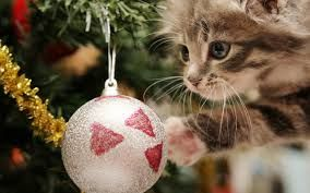 animals in cnristmas tree - Google Search