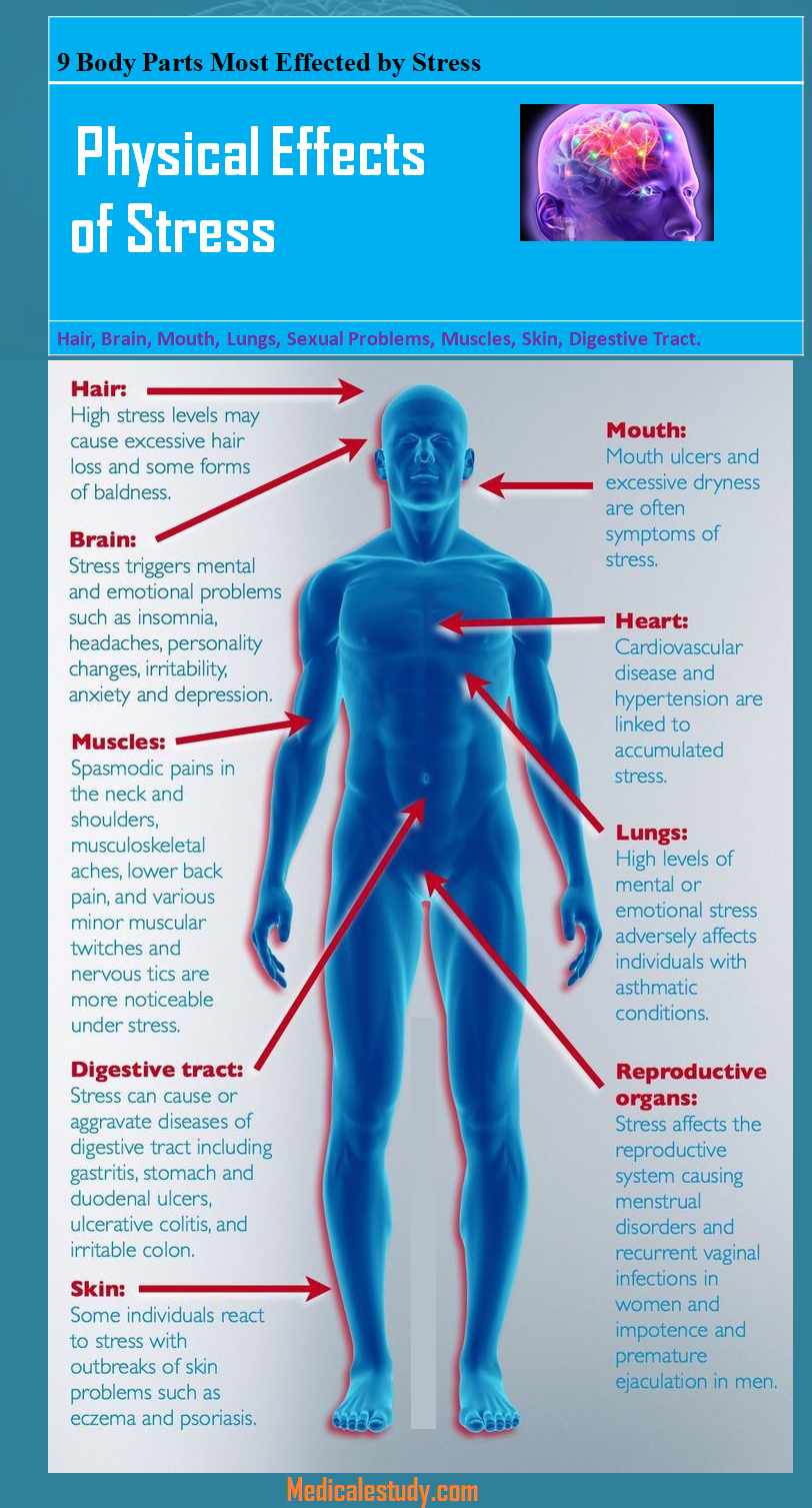 9 Physical Effects of Stress Physical effects of stress