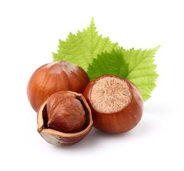 Vous aimez certainement grignoter ce délicieux fruit sec, mais savez-vous que la noisette regorge d'oligo-éléments et de vitamines qui lui confèrent de nombreuses vertus thérapeutiques ?