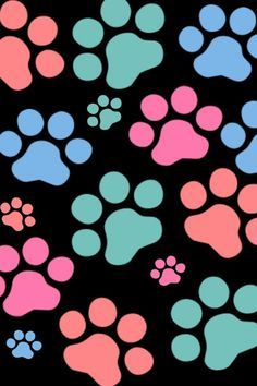 Paws And IPhone 5 Wallpaper
