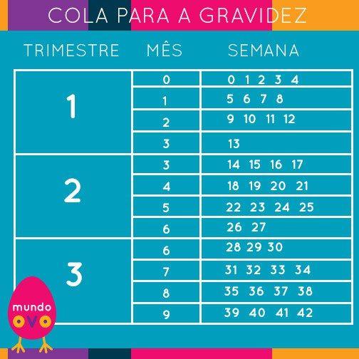 Tabela Para Converter As Semanas Da Gravidez Em Meses E Trimestres