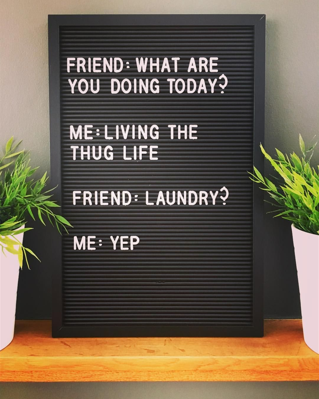 Raise Your Hand If You Re Living The Thug Life Too Quote Quotes Letterbox Letterboxquotes Sunday Humor Sunday Quotes Funny Laundry Quotes Funny