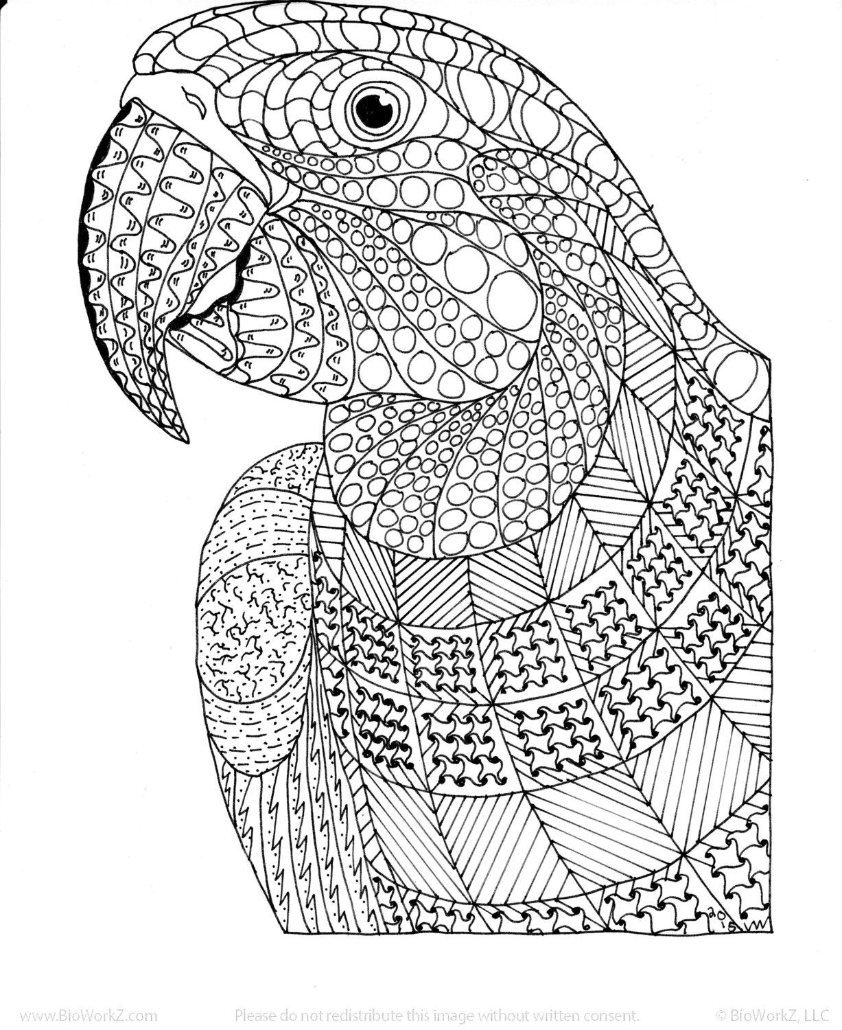 Macaw / Exotic Bird Zentangle Coloring Page by InspirationbyVicki on ...