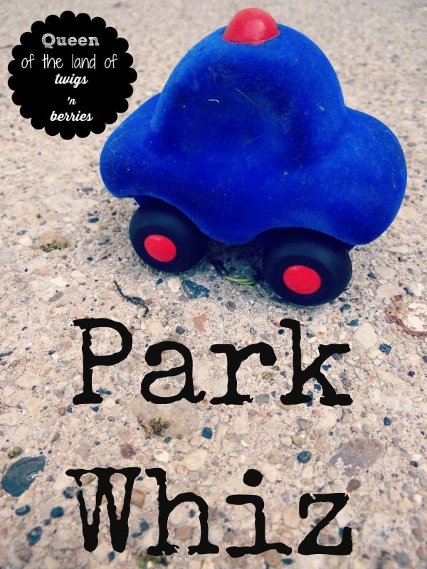 Park Whiz--an app for discounted parking across Chicagoland / www.queenofthelandoftwigsnberries.com
