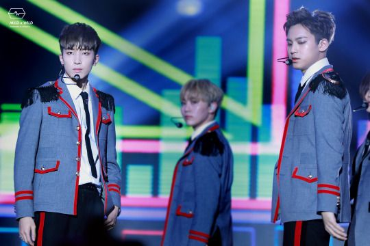 Wonwoo & Mingyu | © mild x wild || do not edit/crop photo.