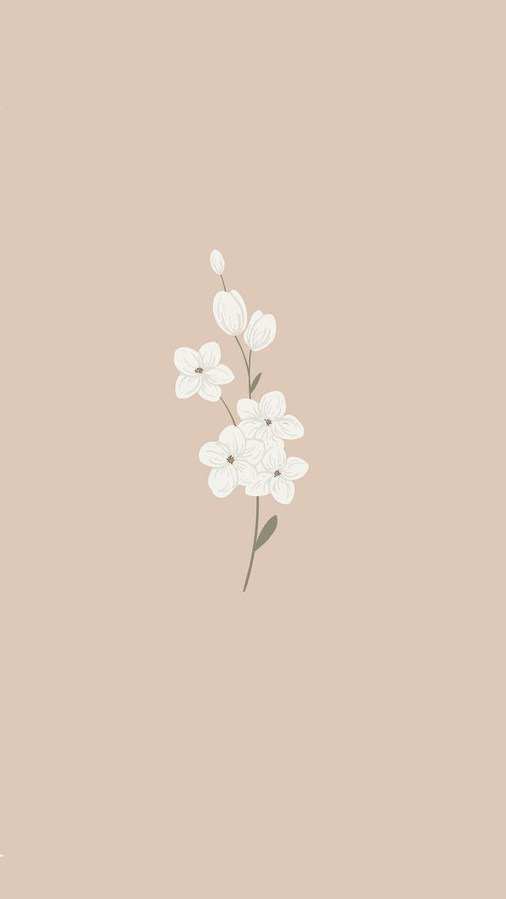 cute floral bohemian minimal design