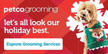 Learn More about Dog Grooming at Petco Dogs, War dogs