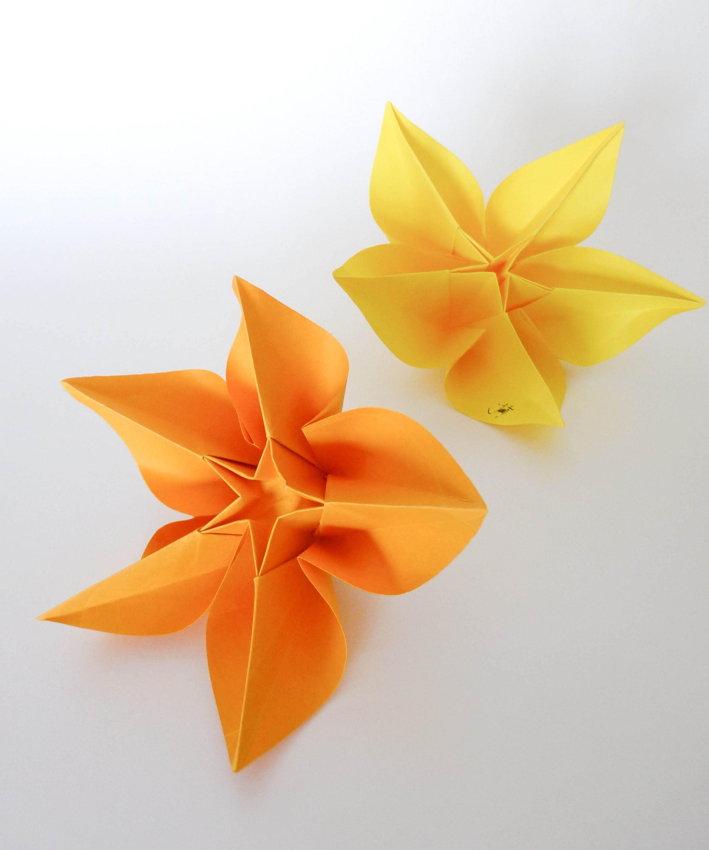Origami Tutorialcarambola Flower Carmen Sprung Origami