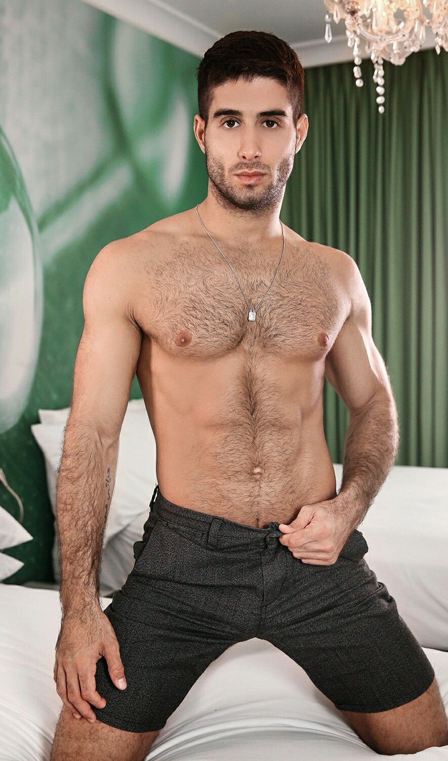 pinpharao26 on boys 2 | pinterest | hairy chest