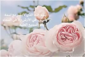 نتيجة بحث الصور عن صور ذكر الله Plants Rose Flowers